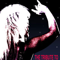 '.Tina Turner Tribute.'